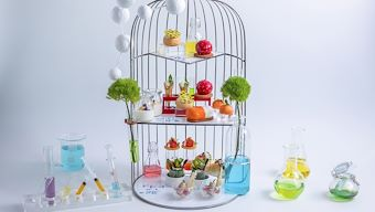 The Nature Lab Afternoon Tea