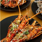 Diverse seafood dining experience